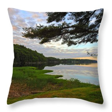 Colors Of The River Throw Pillow