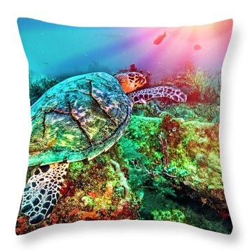 Throw Pillow featuring the photograph Colors Of The Sea In Lights by Debra and Dave Vanderlaan