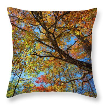 Colors On High Throw Pillow