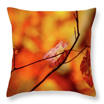 Throw Pillow featuring the photograph Colors by Robert Geary