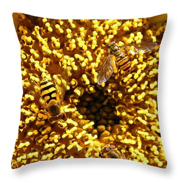Colour Of Honey Throw Pillow