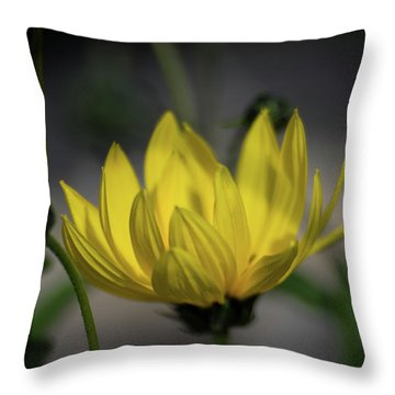 Colour Of Sun Throw Pillow