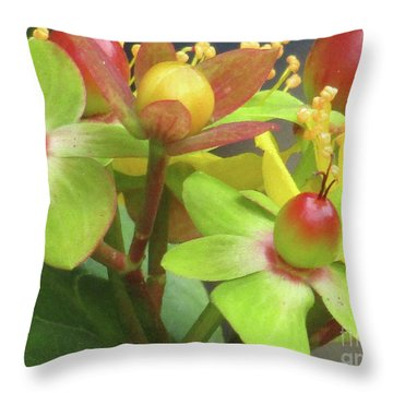 Coloured Beads Throw Pillow by Kim Tran