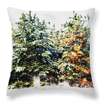 Coloured Trees  Throw Pillow