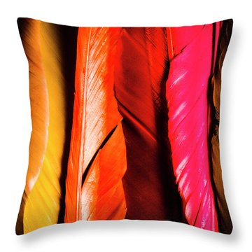 Colourful Feather Art Throw Pillow