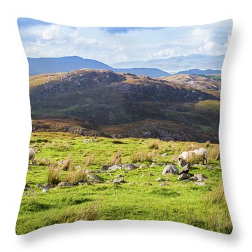 Throw Pillow featuring the photograph Colourful Undulating Irish Landscape In Kerry With Grazing Sheep by Semmick Photo