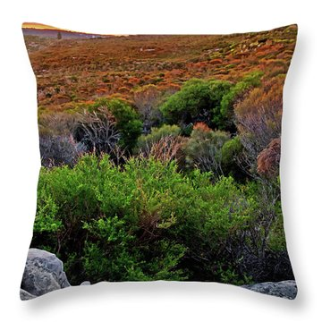 Throw Pillow featuring the photograph Colours Of North Head by Miroslava Jurcik