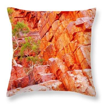 Colours Of Ormiston Gorge, Northern Territory Throw Pillow
