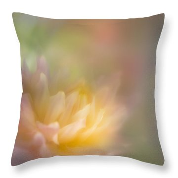 Colours Of Softness Throw Pillow
