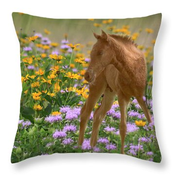 Colt In The Flowers Throw Pillow