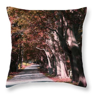 Colt State Park Bristol Rhode Island Throw Pillow