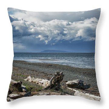 Columbia Beach Throw Pillow by Randy Hall