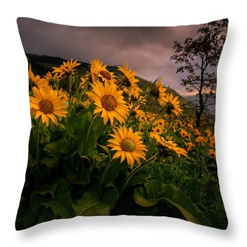 Throw Pillow featuring the photograph Columbia Gorge Joy by Dan Mihai