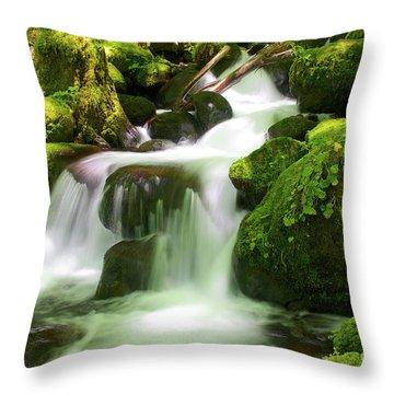 Columbia Gorge Stream Throw Pillow