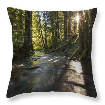Columbia Gorge Sunrise Throw Pillow