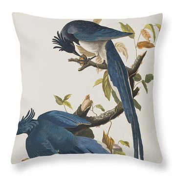 Columbia Jay Throw Pillow by John James Audubon
