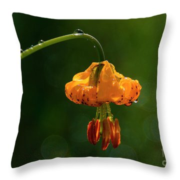 Columbia Lily With Dew Throw Pillow