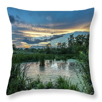 Columbia Marsh Sunset Throw Pillow