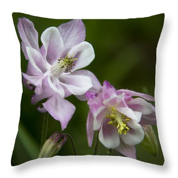 Throw Pillow featuring the photograph Columbination by Michael Friedman
