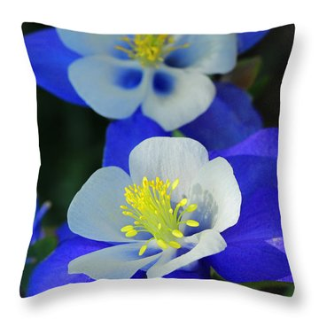 Columbine Day Throw Pillow
