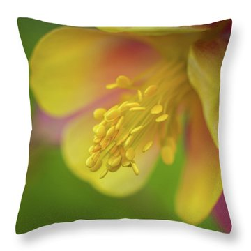 Throw Pillow featuring the photograph Columbine by Greg Nyquist