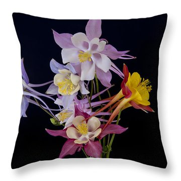 Columbine Medley Throw Pillow by Gary Lengyel