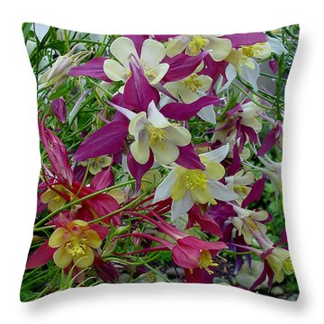 Columbine Throw Pillow by Shirley Heyn