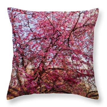 Columnar Sargent Cherry 1 Throw Pillow