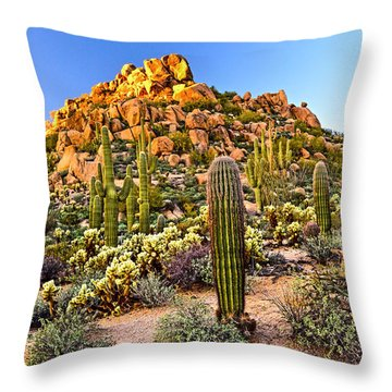 Come Away My Beloved Throw Pillow