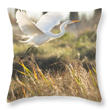Throw Pillow featuring the photograph Come Fly With Me by Julie Andel
