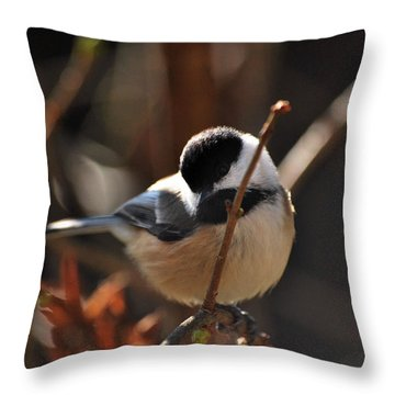 Come Fly With Me Throw Pillow