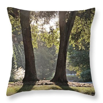 Come On Spring Throw Pillow