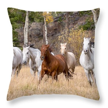 Come Running Throw Pillow by Jack Bell