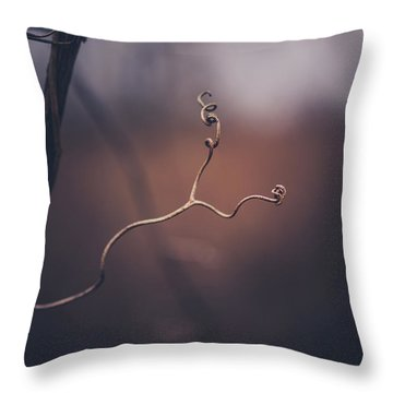 Throw Pillow featuring the photograph Come Slowly by Shane Holsclaw
