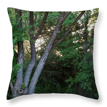 Comes The Dawn Throw Pillow