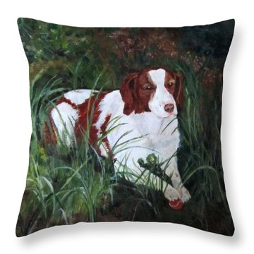 Comet Throw Pillow
