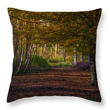 Comfort In These Woods Throw Pillow
