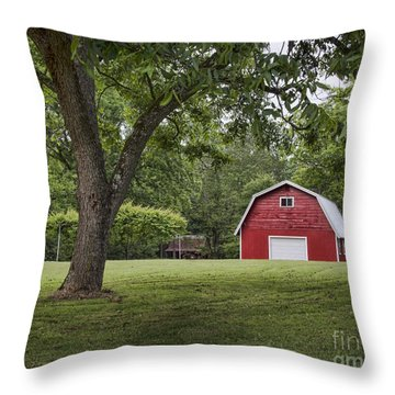 Comfort Zone  Throw Pillow
