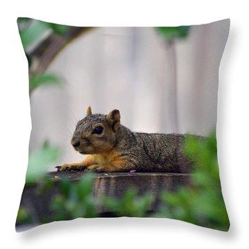 Comfortable  Throw Pillow