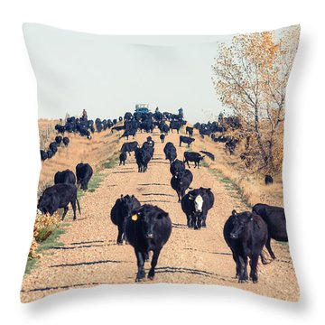 Coming Down The Road Throw Pillow