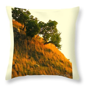 Throw Pillow featuring the photograph Coming Home Again by Joe Jake Pratt