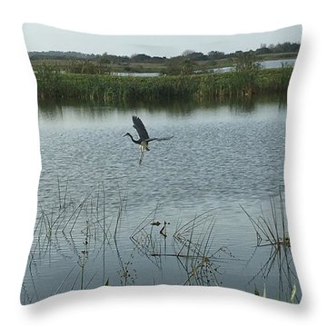 Throw Pillow featuring the photograph Coming In For A Landing by Kay Gilley