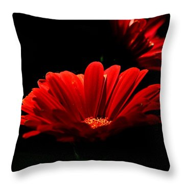 Coming In To The Light Throw Pillow
