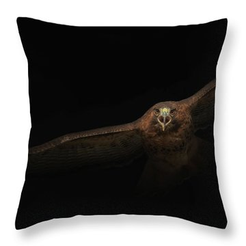 Throw Pillow featuring the photograph Coming Out Of The Dark by Angie Vogel