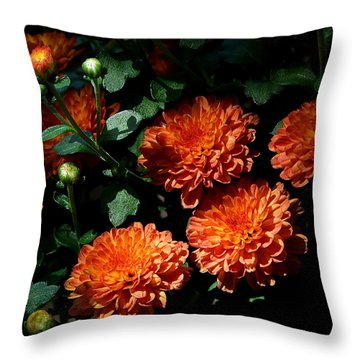 Coming Out Of The Shadows Throw Pillow