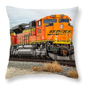 Coming Through Livingston Throw Pillow