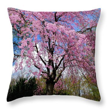 Coming To Life Throw Pillow by Frozen in Time Fine Art Photography