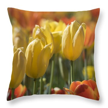 Coming Up Tulips Throw Pillow