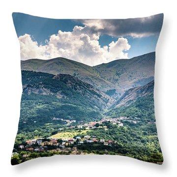 Cominio Throw Pillow by Randy Scherkenbach