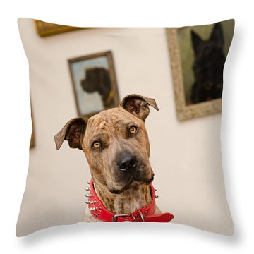 Commodor Throw Pillow